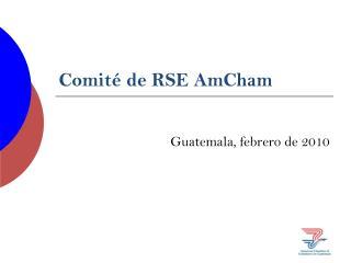 Comité de RSE AmCham