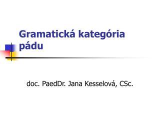 Gramatick� kateg�ria p�du