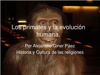 Los primates y la evolución humana.