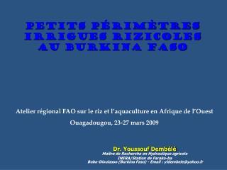 Petits p�rim�tres IRRIGUES rizicoles au Burkina Faso