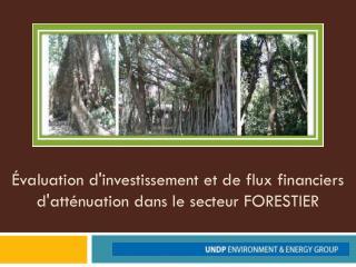 Évaluation d'investissement et de flux financiers  d'atténuation dans le secteur FORESTIER