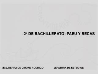2º DE BACHILLERATO: PAEU Y BECAS