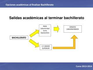Salidas académicas al terminar bachillerato