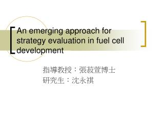 An emerging approach for strategy evaluation in fuel cell development
