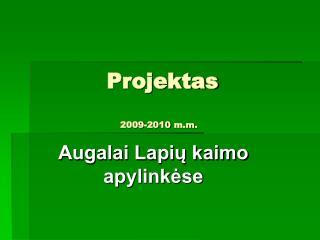Projektas 2009-2010 m.m.