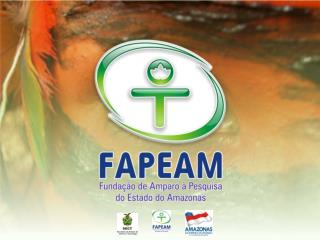 INVESTIMENTO TOTAL DA FAPEAM  2003-2009*