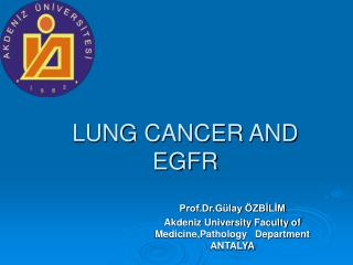 LUNG CANCER AND  EGFR