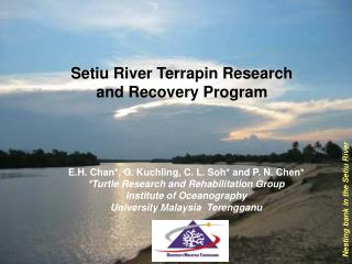 Setiu River Terrapin Research                    and Recovery Program