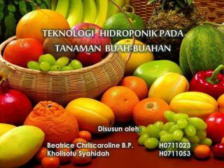 TEKNOLOGI   HIDROPONIK PADA TANAMAN  BUAH-BUAHAN