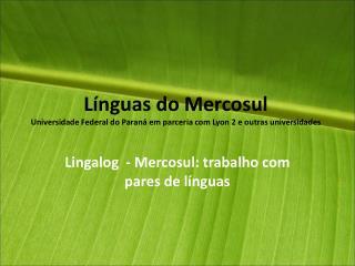 Línguas do Mercosul Universidade Federal do Paraná em parceria com Lyon 2 e outras universidades