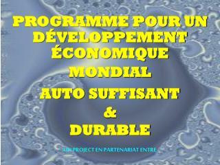 PROGRAMME POUR UN D VELOPPEMENT  CONOMIQUE  MONDIAL AUTO SUFFISANT  DURABLE