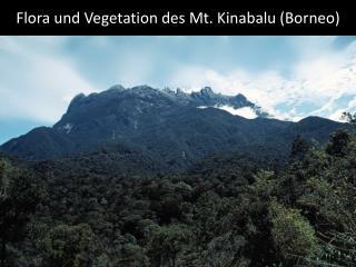 Flora und Vegetation des Mt. Kinabalu (Borneo)