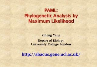 PAML: Phylogenetic Analysis by Maximum Likelihood