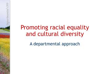 Promoting racial equality  and cultural diversity