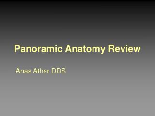 Panoramic Anatomy Review