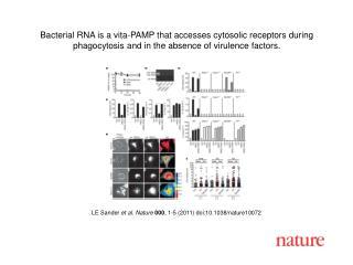 LE Sander  et al .  Nature 000 ,  1 -5 (2011) doi:10.1038/nature10072