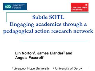 Subtle SOTL  Engaging academics through a pedagogical action research network