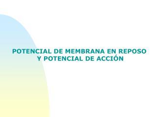 POTENCIAL DE MEMBRANA EN REPOSO  Y POTENCIAL DE ACCIÓN