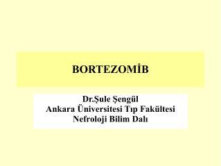 BORTEZOMİB