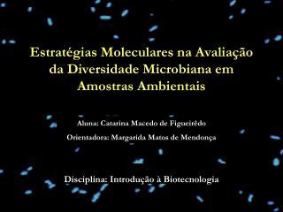 Disciplina: Introdução à Biotecnologia