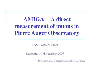 AMIGA –  A direct measurement of muons in Pierre Auger Observatory