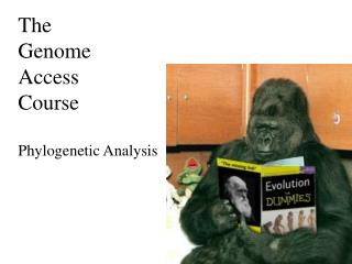 The Genome Access Course Phylogenetic Analysis