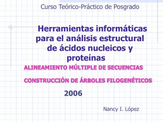 Curso Te�rico-Pr�ctico de Posgrado Herramientas inform�ticas  para el an�lisis estructural