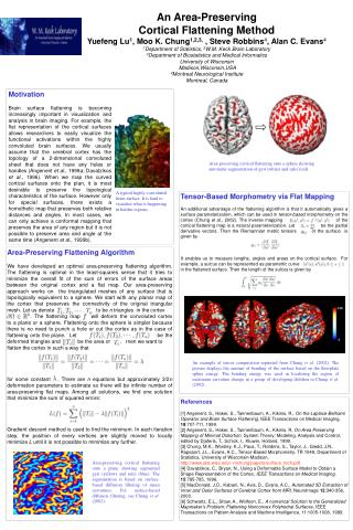 An Area-Preserving  Cortical Flattening Method