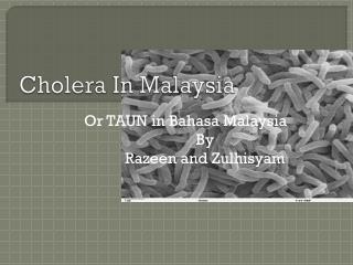 Cholera In Malaysia
