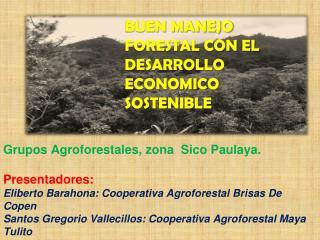 BUEN  MANEJO FORESTAL CON EL DESARROLLO ECONOMICO SOSTENIBLE