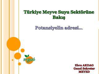 Türkiye Meyve Suyu Sektörüne Bakış Potansiyelin adresi…