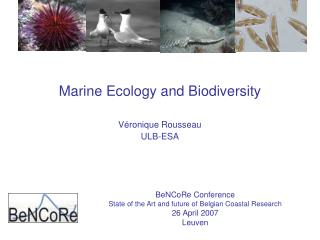 Marine Ecology and Biodiversity Véronique Rousseau ULB-ESA
