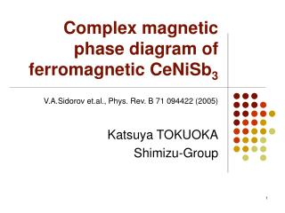 Complex magnetic phase diagram of ferromagnetic CeNiSb 3