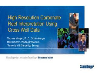 High Resolution Carbonate Reef Interpretation Using Cross Well Data