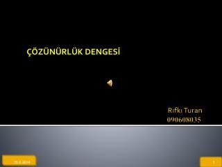 Rıfkı Turan 090608035