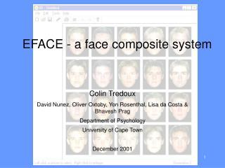 EFACE - a face composite system