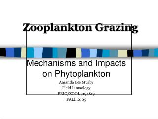 Zooplankton Grazing
