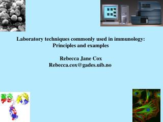 Laboratory techniques commonly used in immunology: Principles and examples Rebecca Jane Cox