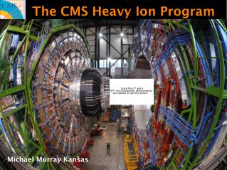 The CMS Heavy Ion Program