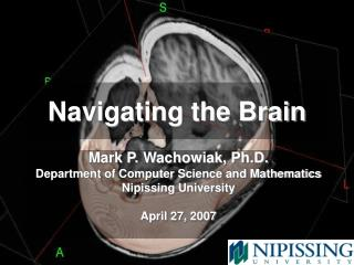Navigating the Brain