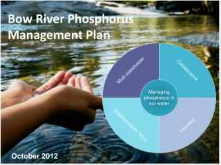 Bow River Phosphorus Management Plan