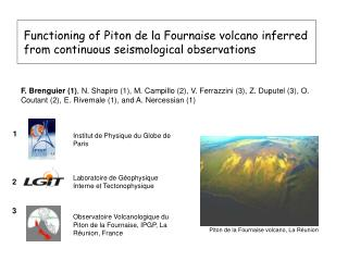 Functioning of Piton de la Fournaise volcano inferred from continuous seismological observations