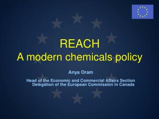 REACH A modern chemicals policy