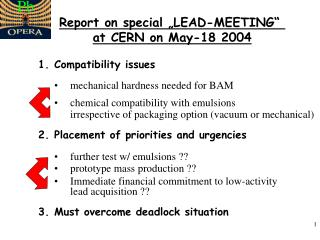 "Report on special ""LEAD-MEETING""  at CERN on May-18 2004"