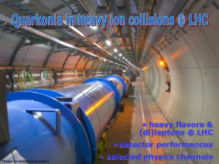 Quarkonia in heavy ion collisions @ LHC