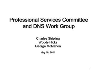 Professional Services Committee and DNS Work Group
