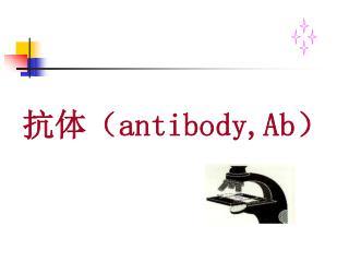 抗体( antibody,Ab )