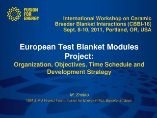 The European Breeder Blanket concepts  European TBM Project Organization TBM testing at ITER