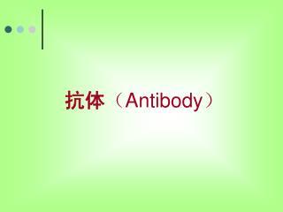 抗体 ( Antibody )