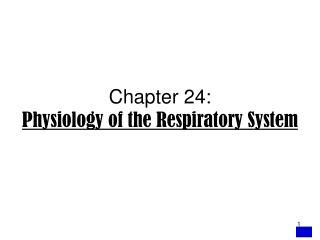Chapter 24:  Physiology of the Respiratory System